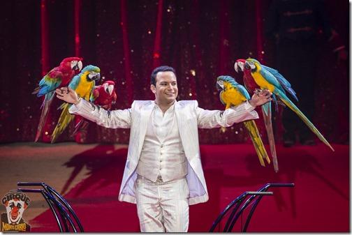 Alessio_und_seine_froehlichen_Papageien